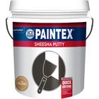 Paintex Sheesha Putty