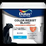 Color Resist Blanc Mat